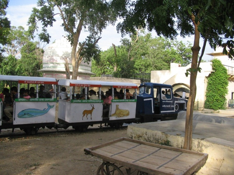 Gulab Bagh Garden and Zoo Toy Train Udaipur