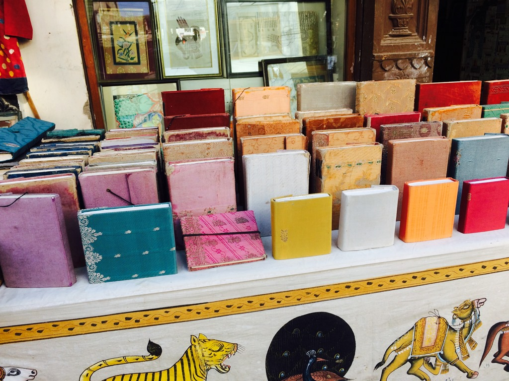 Things to Buy in Udaipur (Diaries)