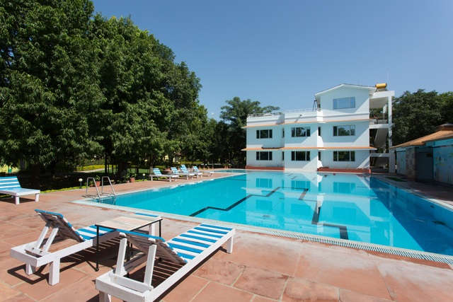 Swimming Classes in Udaipur 3