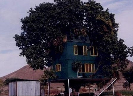 Udaipur Tree House