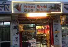 Pet Shops in Udaipur