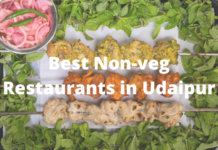 Best Non-veg Restaurants in Udaipur